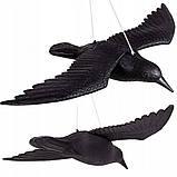 Ворон для отпугивания птиц Springos SKL41-277656, фото 2