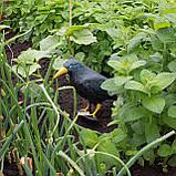 Ворон для отпугивания птиц Springos SKL41-277658, фото 2