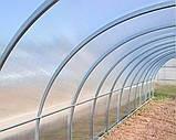 Теплиця Oscar Садівник Агро 24 м2, 300х800х200 см каркас під стільниковий полікарбонат SKL54-240830, фото 6