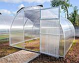 Теплиця Oscar Садівник Агро 30 м2, 300х1000х200 см з стільниковим полікарбонатом 4 мм SKL54-240835, фото 7