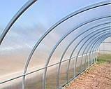 Теплица Oscar Садовод Агро 30 м², 300х1000х200 см с сотовым поликарбонатом 6 мм SKL54-240836, фото 2