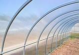 Теплиця Садівник Агро 300х800х200 см з стільниковим полікарбонатом 8 мм SKL54-240903, фото 7