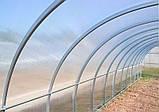 Теплиця Садівник Еліт 40 300х1000х200 см з стільниковим полікарбонатом 4 мм SKL54-240877, фото 2