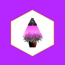 Фито-освещение Светодиодное (LED)