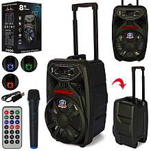 Портативна колонка-валіза на колесах з ручкою, з Bluetooth, мікрофоном, з пультом, на акумуляторі PK-09L