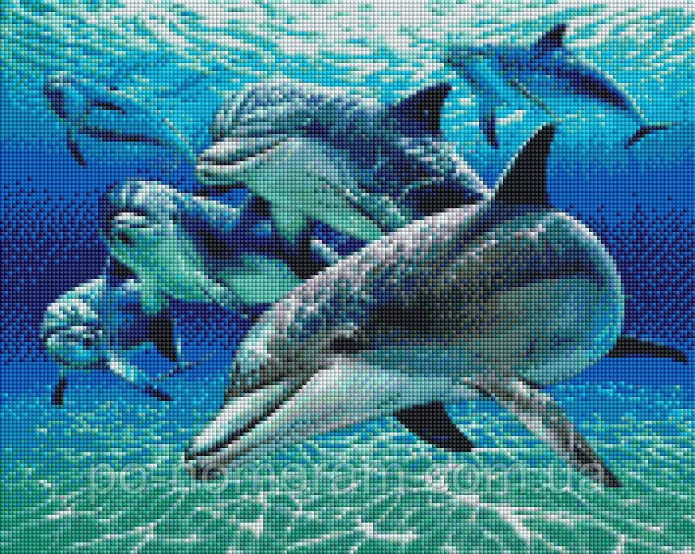 Алмазная вышивка ArtStory Дельфины (ASM21) 40 х 50 см (На подрамнике)