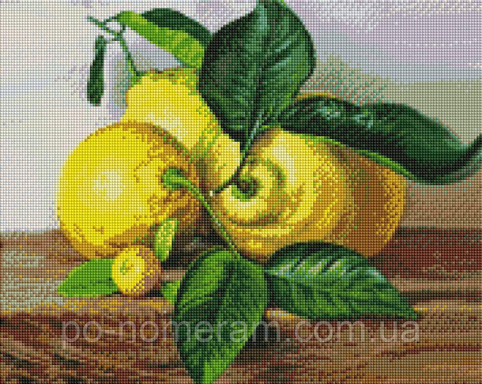 Набор алмазная мозаика ArtStory Лимоны (ASM28) 40 х 50 см (На подрамнике)