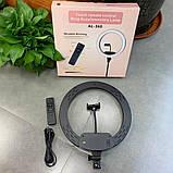 Профессиональная светодиодная кольцевая лампа 36 см AL-360 + штатив (0,7-2м) кольцевой свет, селфи лампа, фото 3