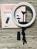 Профессиональная светодиодная кольцевая лампа 36 см AL-360 + штатив (0,7-2м) кольцевой свет, селфи лампа, фото 4