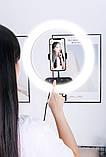Профессиональная светодиодная кольцевая лампа 36 см AL-360 + штатив (0,7-2м) кольцевой свет, селфи лампа, фото 8