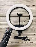 Профессиональная светодиодная кольцевая лампа 36 см AL-360 + штатив (0,7-2м) кольцевой свет, селфи лампа, фото 9