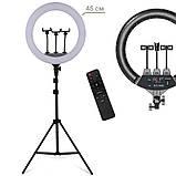 Светодиодная кольцевая лампа LED SLP-G500 на три телефона с пультом 220В диаметром 45см + штатив 2м, фото 2