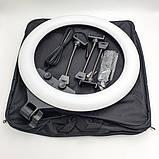 Светодиодная кольцевая лампа LED SLP-G500 на три телефона с пультом 220В диаметром 45см + штатив 2м, фото 3