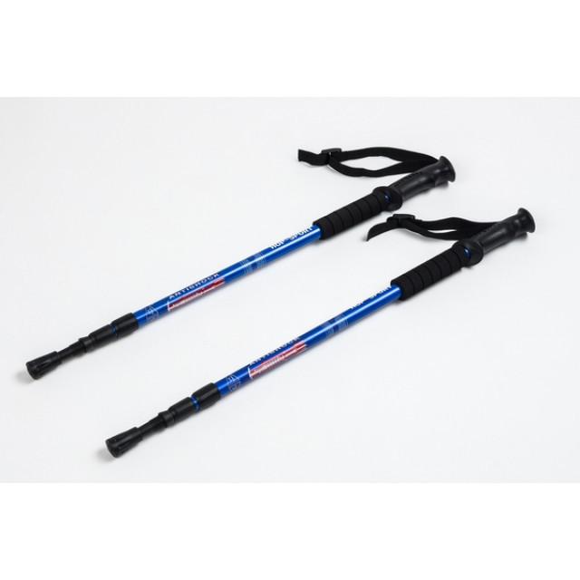 Трекінгові палки регульовані Everest blue