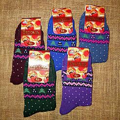 Жіночі махрові шкарпетки Версаль/Червоноград