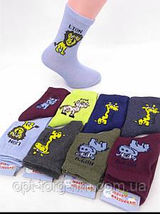 Дитячі шкарпетки 14-16 (22-25обувь) МІКС