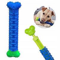 Щітка для чистки зубів у собак Сhewbrush (зубна щітка для собак)
