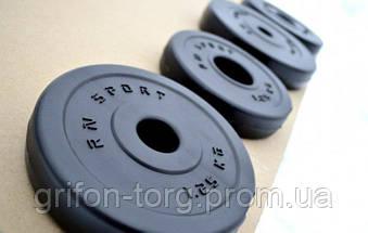 75 кг (4 по 10, 4 по 5, 4 по 2.5, 4 по 1.25) блинов на штангу покрытых пластиком (31 мм), фото 2