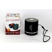 Колонка WSTER WS-231BT Bluetooth Сьёмный акумулятор