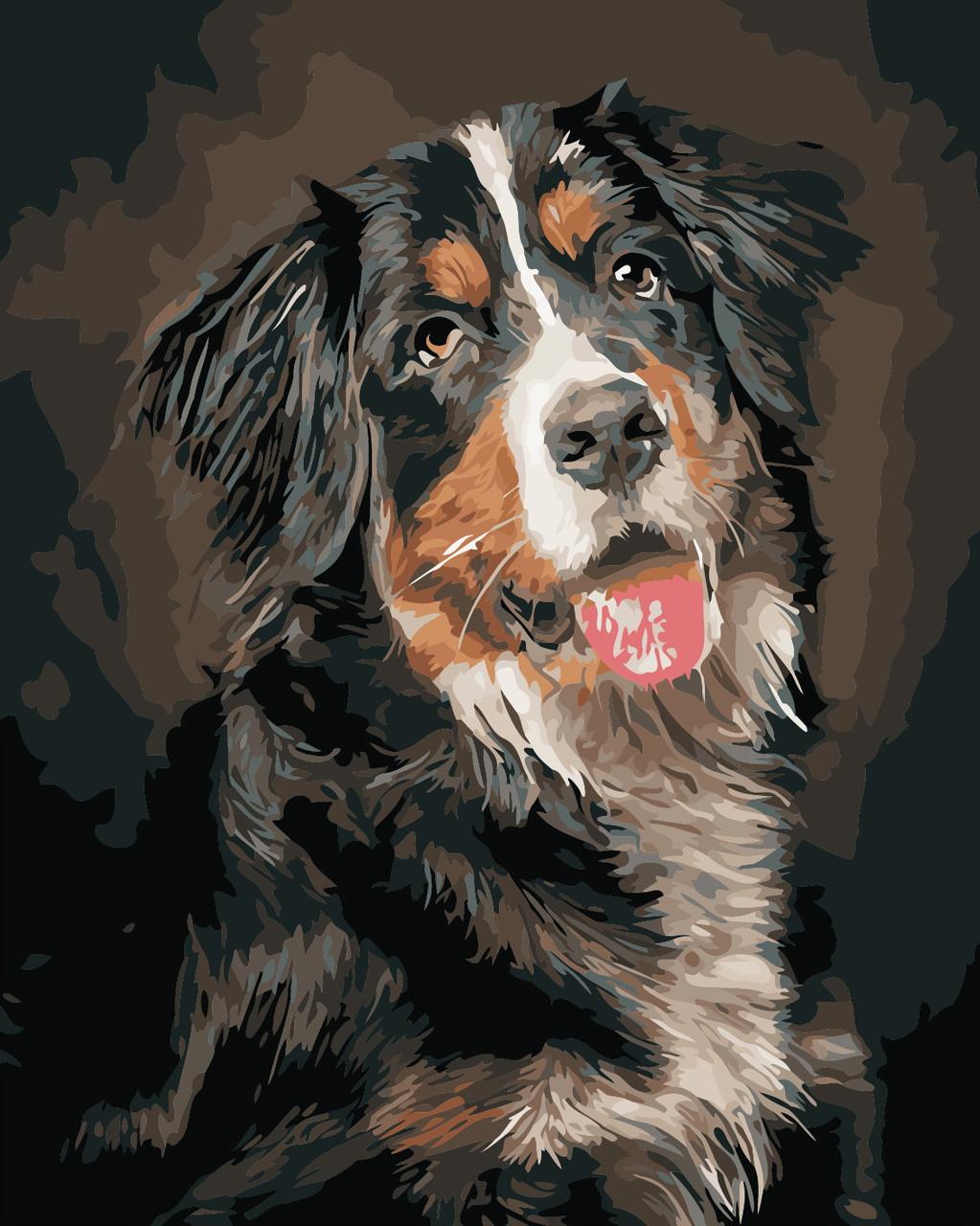 Художественный творческий набор, картина по номерам Портрет собаки, 40x50 см, «Art Story» (AS0883)