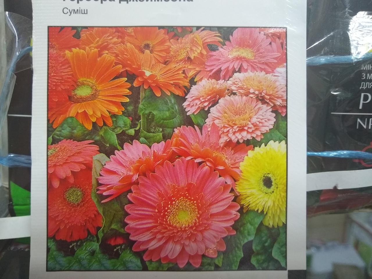 Семена герберы Джеймсона смесь 0,1 грамм семян Хем Заден Нидерланды