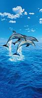 Фотообои на стену или двери Дельфины размер 200 х 86 см