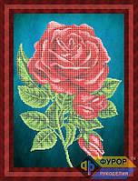 Схема для вышивки бисером - Роза, Арт. НБч3-48