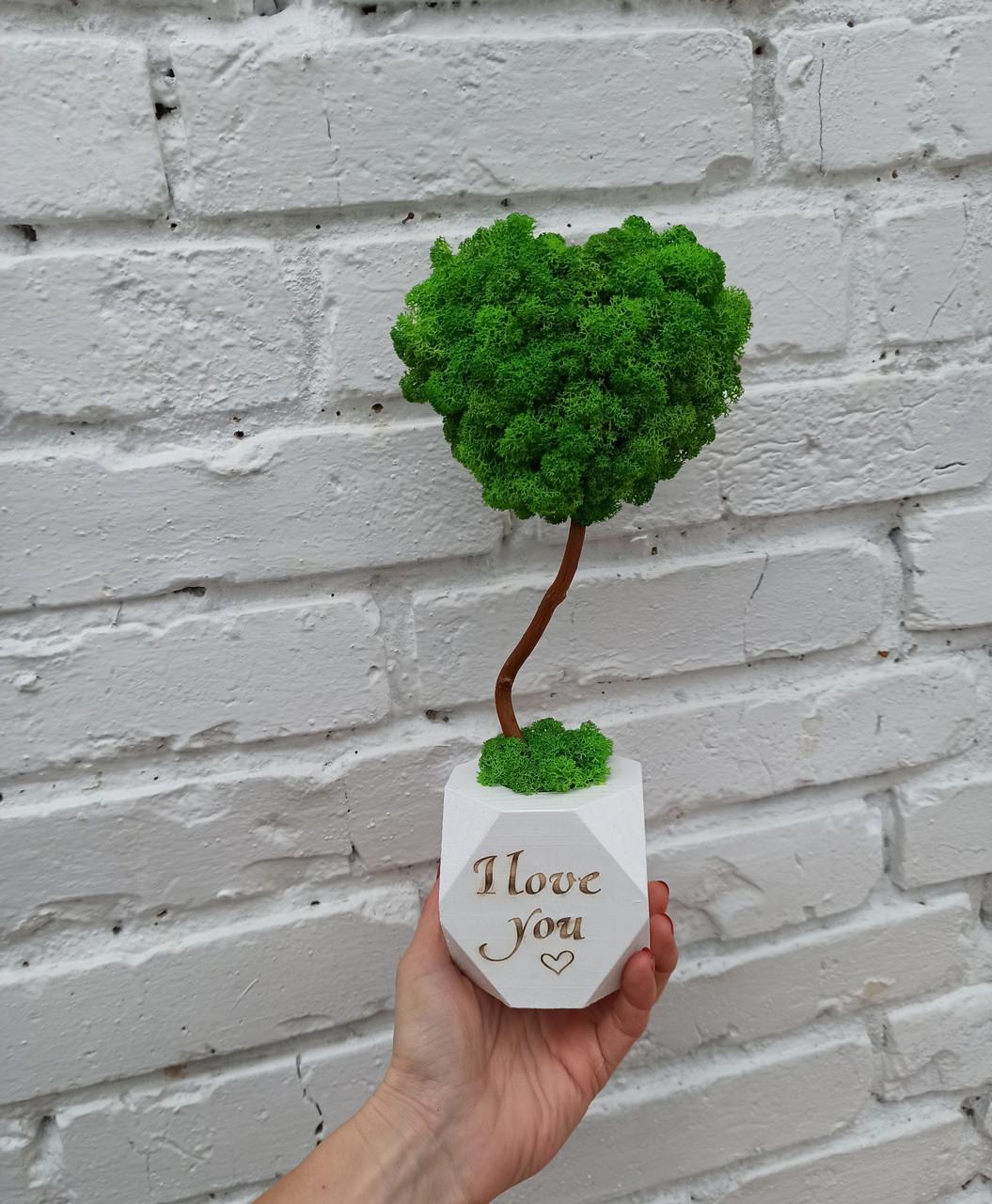Подарунок до дня святого Валентина коханій, топіарій серце з моху, дерево з моху у вигляді серця