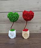 Подарунок до дня святого Валентина коханій, топіарій серце з моху, дерево з моху у вигляді серця, фото 4