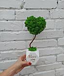 Подарунок до дня святого Валентина коханій, топіарій серце з моху, дерево з моху у вигляді серця, фото 3