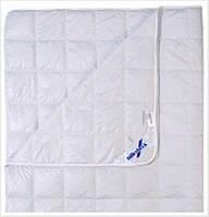Одеяло шёлковое Billerbeck 1