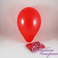 Воздушные шары красные (10 шт.)