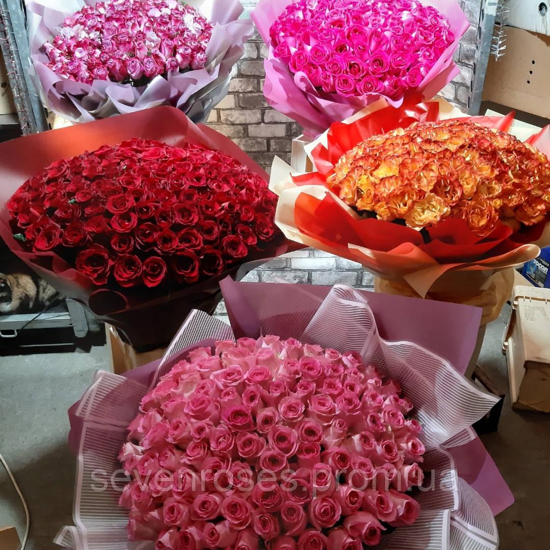 Букеы из 101 розы