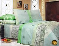 Полуторный постельный комплект Б0339 , цвет: зеленый, голубой
