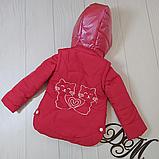 Куртка на девочку, фото 4