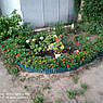 Бордюрная лента садовая волнистая коричневая Bradas 15см х 9м, фото 4