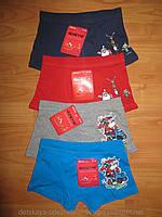 Трусики-шортики для мальчика 8-10, 10-12, 12-14 лет