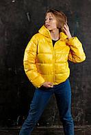Женская демисезонная куртка VIDLIK W1 желтая