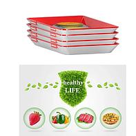 Лоток для хранения пищевых продуктов в вакуумной упаковке Clever пластик, размер 31х24х4см, поднос кухонный, фото 1