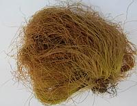 Кукурузные рыльца 50 гр (Свежий урожай)