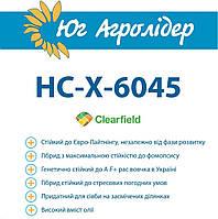 Семена подсолнечника гибрид НС-Х-6045 (Экстра+): под евролайтинг, Сербская селекция