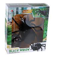Паук Черная Вдова/ Black Widow на радиоуправлении длина 28см, фото 1