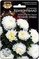 Астра Хризантелла Привид Опери, 30шт
