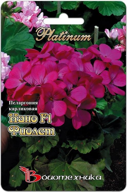 Пеларгония Нано Ф1 Виолет