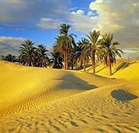 Туры в Тунис, фото 1