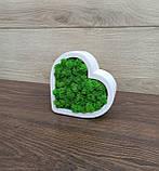 Гіпсове кашпо у формі серця з червоним мохом., фото 4
