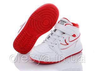 Кроссовки хайтопы, ботинки для мальчиков тм W.Niko 626 Размеры 27- 31