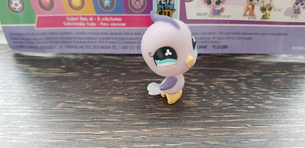 Lps littlest pet shop - лпс птичка фиолетовая Hasbro старая коллекция