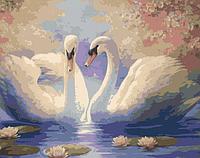 Картина по номерам 40*50 см Белые лебеди раскраска антистресс