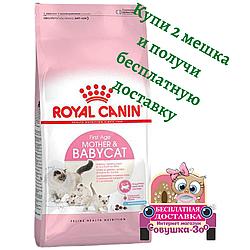 Корм Royal Canin Mother Babycat Роял Канін для кошенят і годуючих кішок 10 кг Акція 1+1